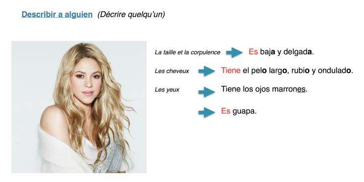 Descripción de Shakira.png